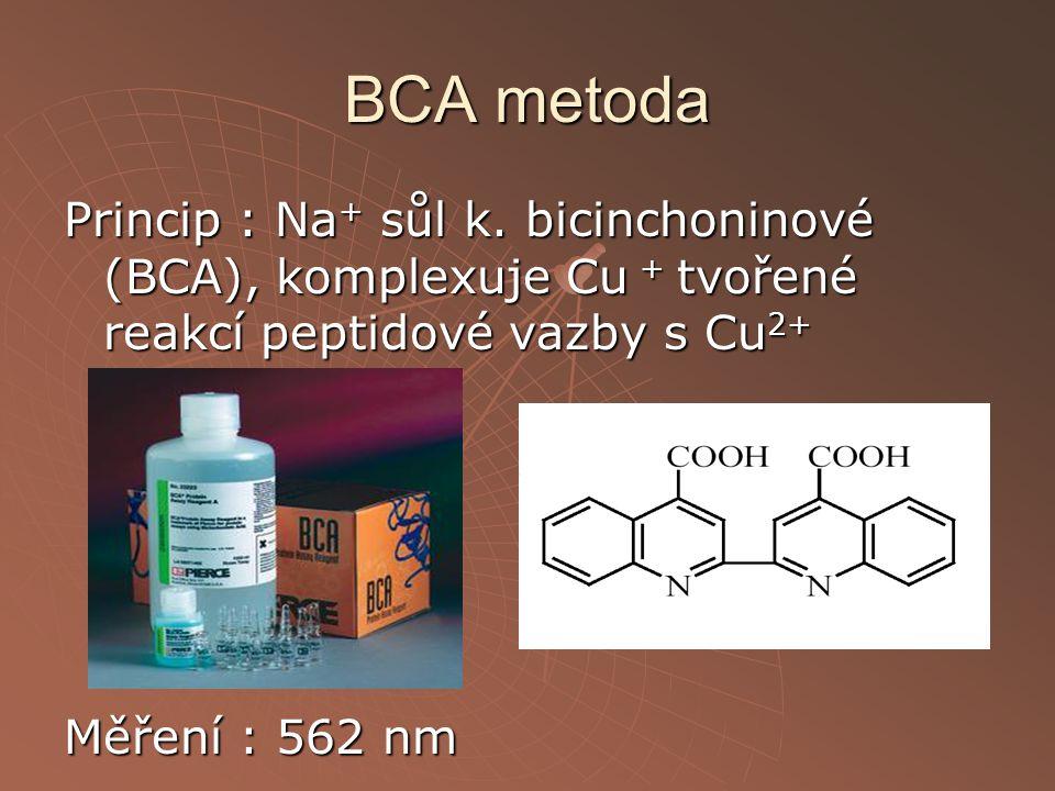 BCA metoda Princip : Na + sůl k. bicinchoninové (BCA), komplexuje Cu + tvořené reakcí peptidové vazby s Cu 2+ Měření : 562 nm
