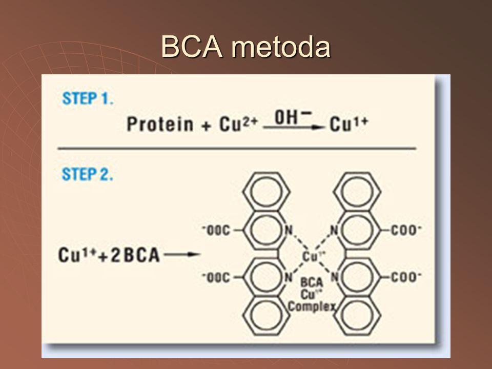 BCA metoda
