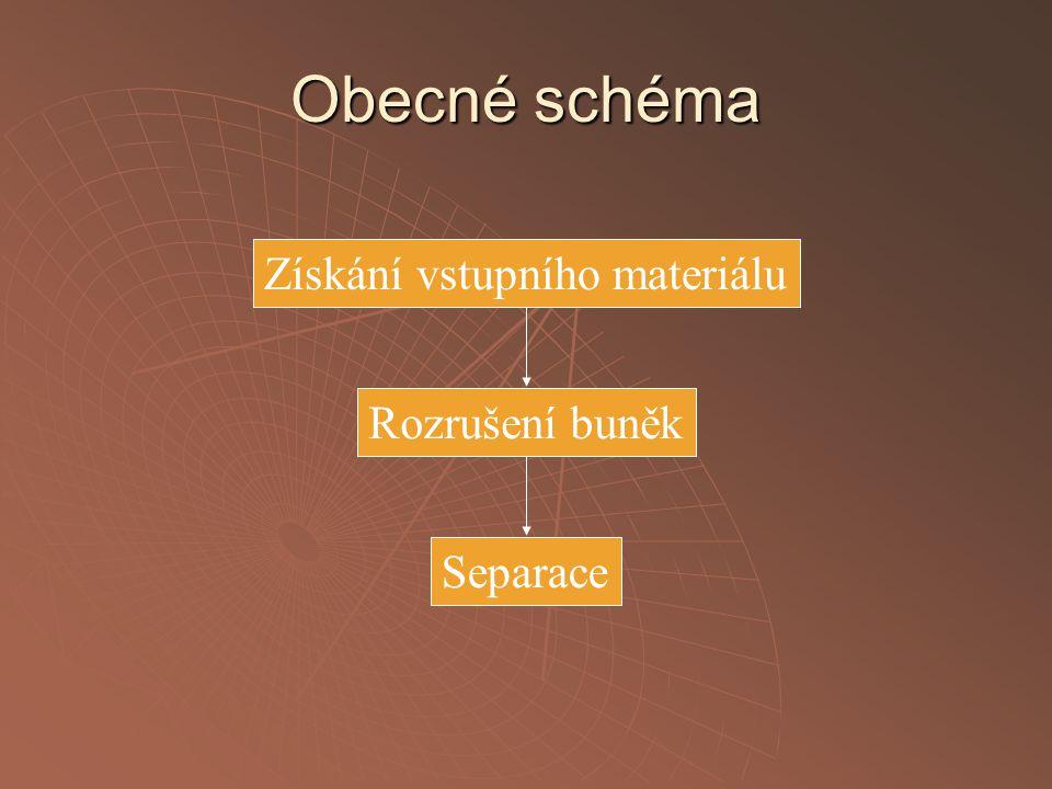 Obecné schéma Získání vstupního materiálu Rozrušení buněk Separace