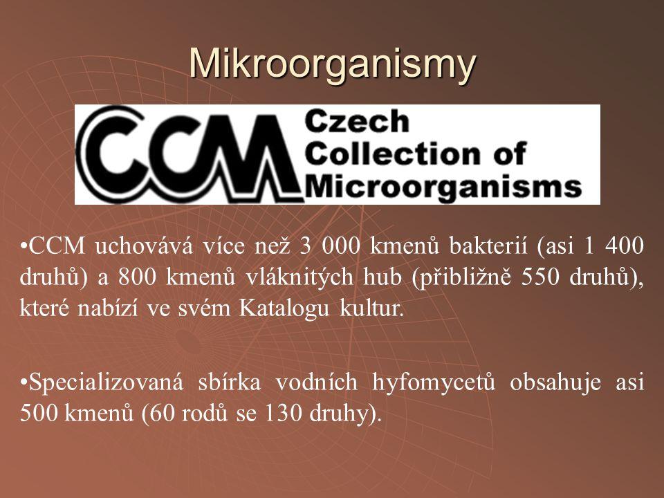 CCM uchovává více než 3 000 kmenů bakterií (asi 1 400 druhů) a 800 kmenů vláknitých hub (přibližně 550 druhů), které nabízí ve svém Katalogu kultur. S