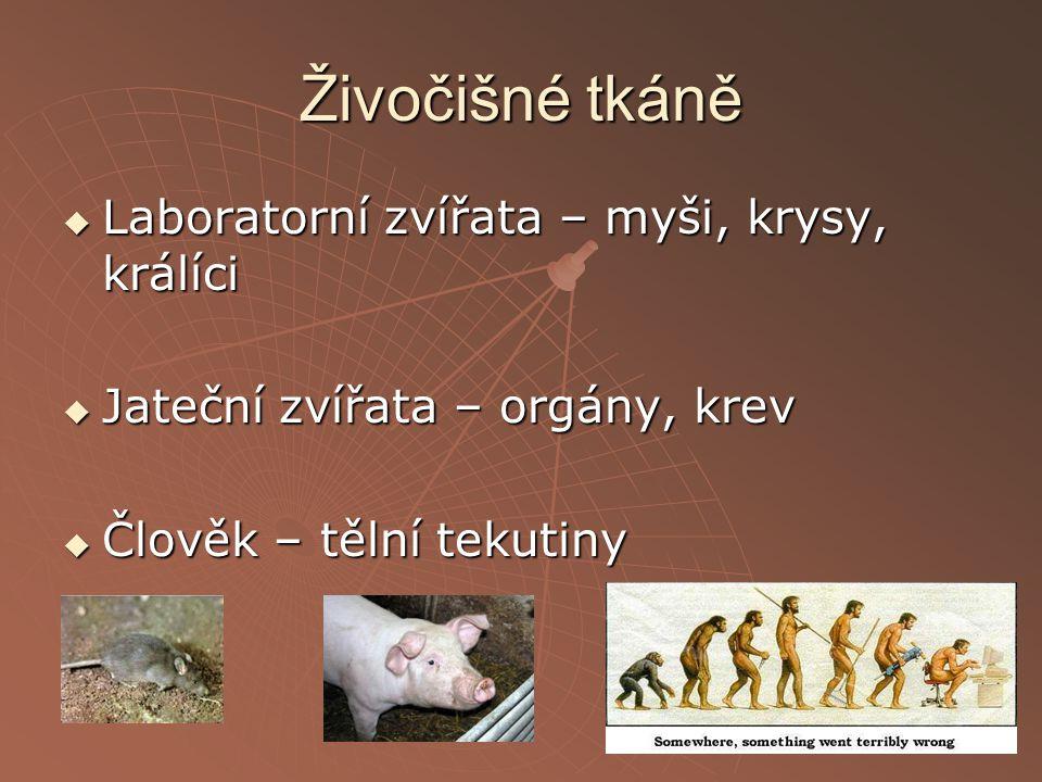 Živočišné tkáně  Laboratorní zvířata – myši, krysy, králíci  Jateční zvířata – orgány, krev  Člověk – tělní tekutiny