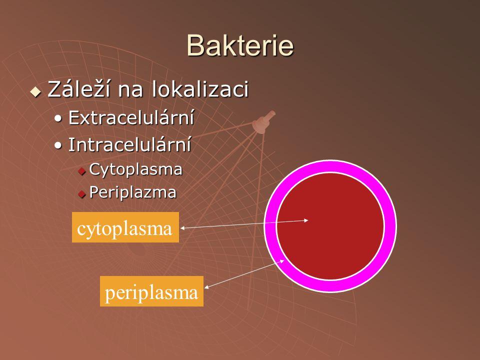 Bakterie  Záleží na lokalizaci ExtracelulárníExtracelulární IntracelulárníIntracelulární  Cytoplasma  Periplazma cytoplasma periplasma