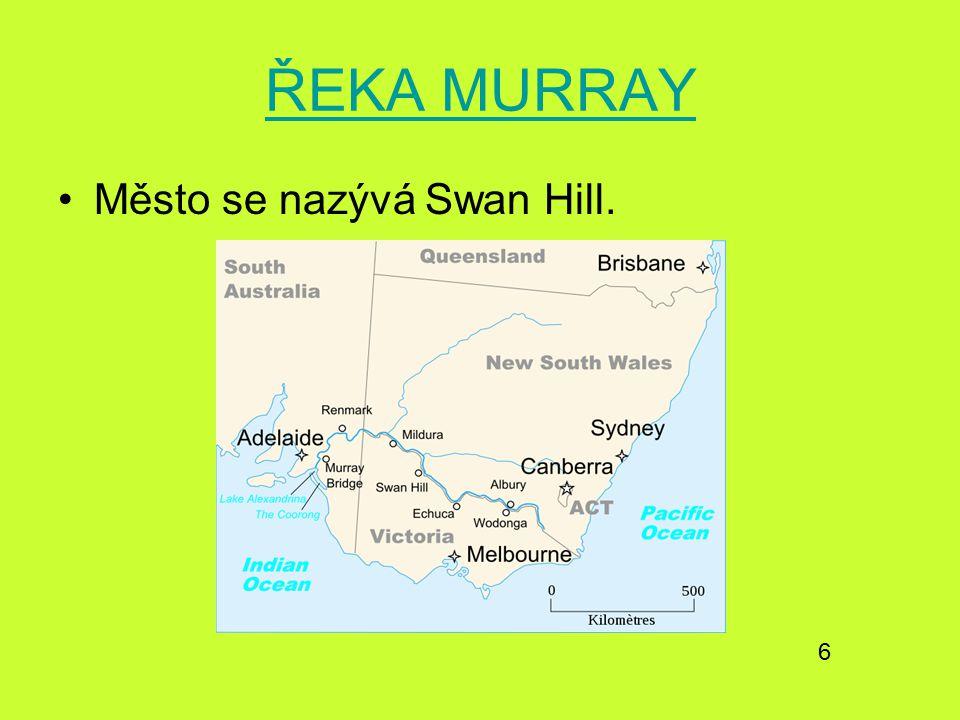ŘEKA MURRAY Město se nazývá Swan Hill. 6