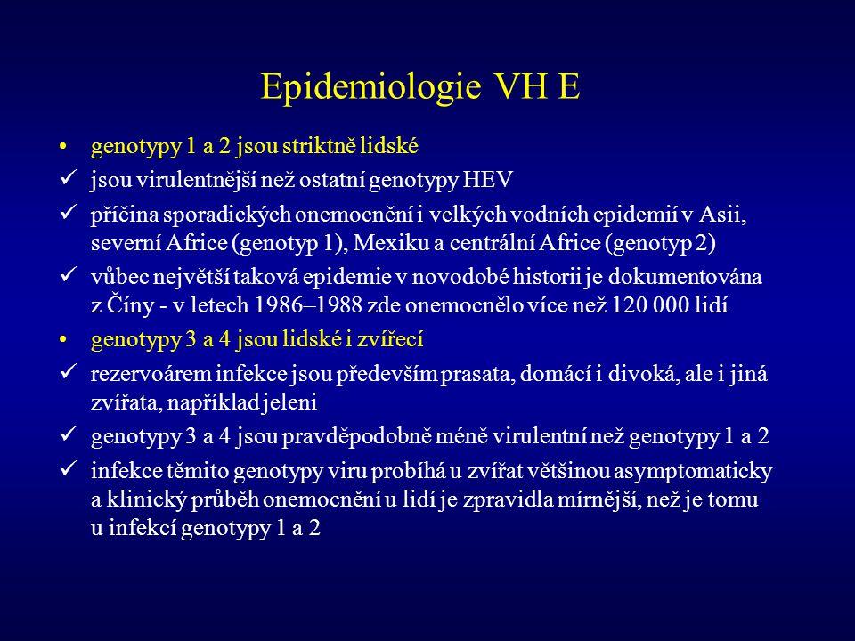 Epidemiologie VH E genotypy 1 a 2 jsou striktně lidské jsou virulentnější než ostatní genotypy HEV příčina sporadických onemocnění i velkých vodních e
