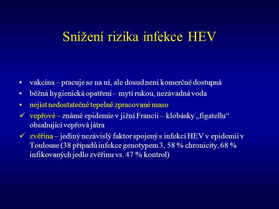 Snížení rizika infekce HEV vakcína – pracuje se na ní, ale dosud není komerčně dostupná běžná hygienická opatření – mytí rukou, nezávadná voda nejíst