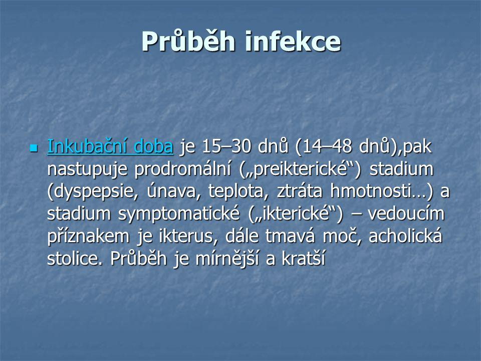 """Průběh infekce Inkubační doba je 15–30 dnů (14–48 dnů),pak nastupuje prodromální (""""preikterické"""") stadium (dyspepsie, únava, teplota, ztráta hmotnosti"""