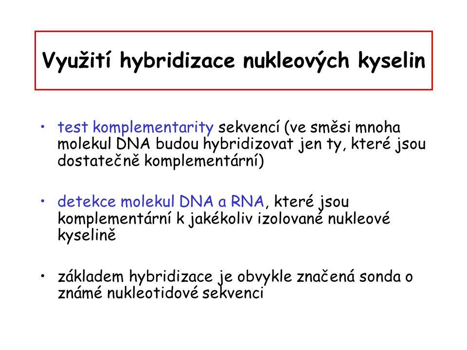 Využití hybridizace nukleových kyselin test komplementarity sekvencí (ve směsi mnoha molekul DNA budou hybridizovat jen ty, které jsou dostatečně komp
