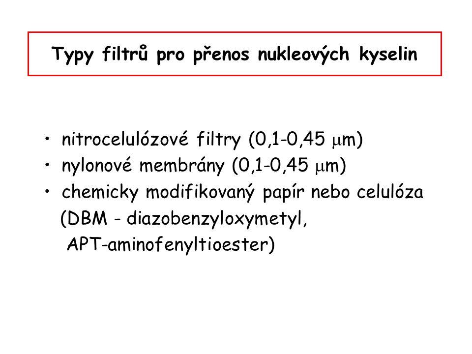 Typy filtrů pro přenos nukleových kyselin nitrocelulózové filtry (0,1-0,45  m) nylonové membrány (0,1-0,45  m) chemicky modifikovaný papír nebo celu