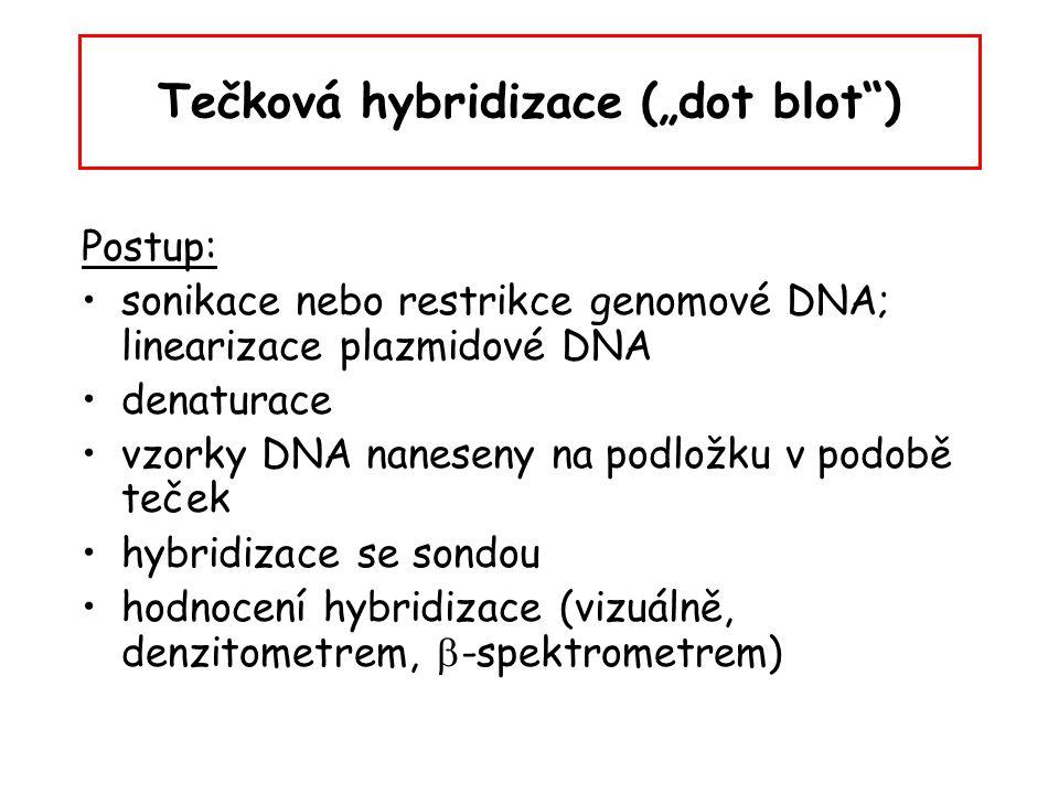 """Tečková hybridizace (""""dot blot"""") Postup: sonikace nebo restrikce genomové DNA; linearizace plazmidové DNA denaturace vzorky DNA naneseny na podložku v"""