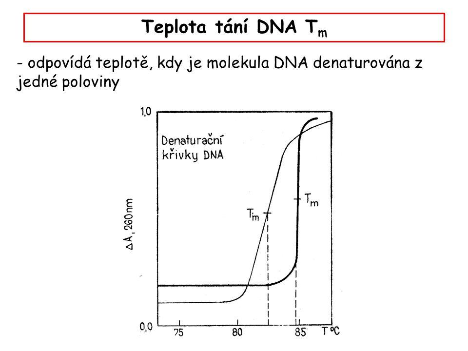 Monitorování teploty tání dsDNA Teplota tání (denaturace) závisí na čtyřech hlavních faktorech: - obsahu GC (a AT) - koncentraci solí - délce sekvence - přítomnosti nespárovaných úseků GC rich AT rich Temp