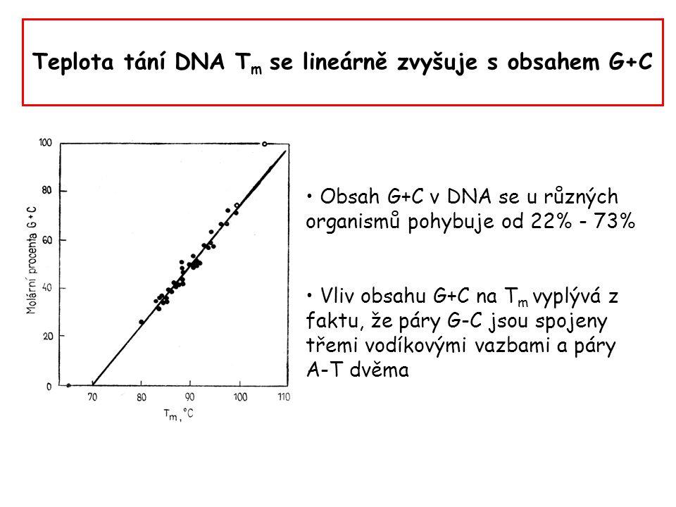 """Vliv dalších faktorů na denaturaci DNA organická rozpouštědla jako DMSO (dimethyl sulfoxide) a formamid přerušují vodíkové můstky mezi řetězci DNA změny pH rovněž porušují vodíkové můstky snížení obsahu solí odstraňuje ionty, které poskytují """"ochranu negativním nábojům v molekule DNA (eliminace vzájemného ovlivňování nabitých skupin): DNA lze denaturovat při nižší teplotě"""