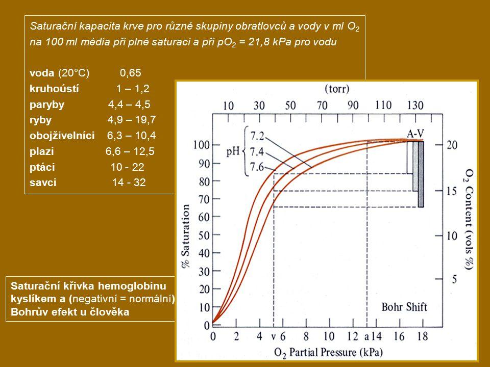 Saturační kapacita krve pro různé skupiny obratlovců a vody v ml O 2 na 100 ml média při plné saturaci a při pO 2 = 21,8 kPa pro vodu voda (20°C) 0,65 kruhoústí 1 – 1,2 paryby 4,4 – 4,5 ryby 4,9 – 19,7 obojživelníci 6,3 – 10,4 plazi 6,6 – 12,5 ptáci 10 - 22 savci 14 - 32 Saturační křivka hemoglobinu kyslíkem a (negativní = normální) Bohrův efekt u člověka