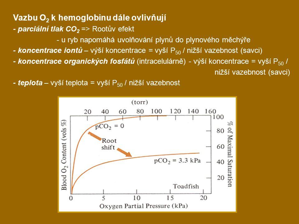 Vazbu O 2 k hemoglobinu dále ovlivňují - parciální tlak CO 2 => Rootův efekt - u ryb napomáhá uvolňování plynů do plynového měchýře - koncentrace iontů – výší koncentrace = vyší P 50 / nižší vazebnost (savci) - koncentrace organických fosfátů (intracelulárně) - výší koncentrace = vyší P 50 / nižší vazebnost (savci) - teplota – vyší teplota = vyší P 50 / nižší vazebnost