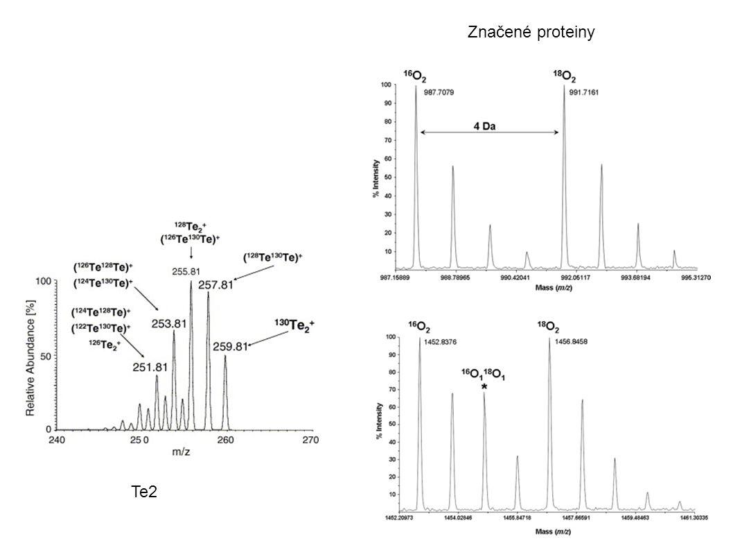 Te2 Značené proteiny