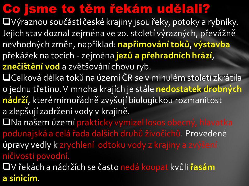Co jsme to těm řekám udělali?  Výraznou součástí české krajiny jsou řeky, potoky a rybníky. Jejich stav doznal zejména ve 20. století výrazných, přev