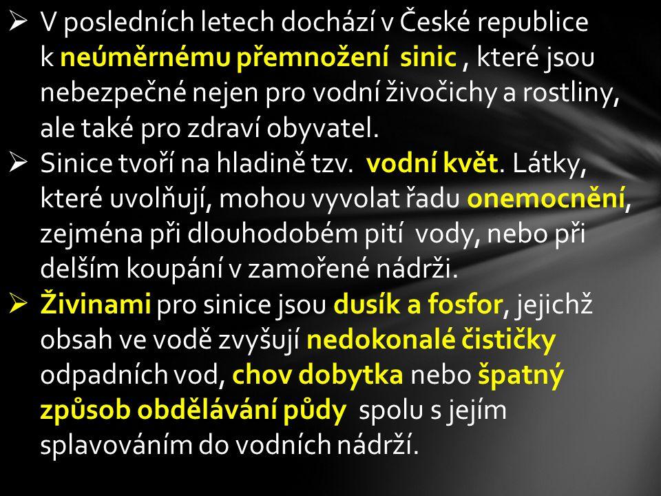  V posledních letech dochází v České republice k neúměrnému přemnožení sinic, které jsou nebezpečné nejen pro vodní živočichy a rostliny, ale také pr