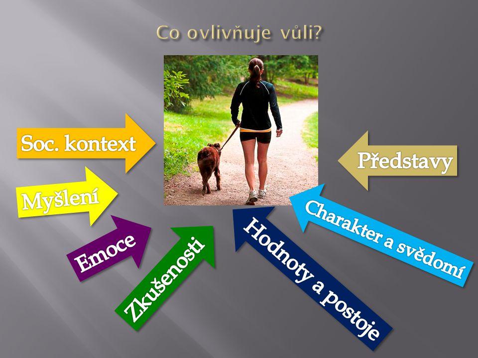  Volní vlastnosti (vytrvalost, zodpovědnost, rozhodnost, cílevědomost, sebeovládání, zásadovost /tvrdohlavost, impulsivnost, ovlivnitelnost)  Aktivní  Pasivní  Reaktivní  Volní procesy ( řídí psych.