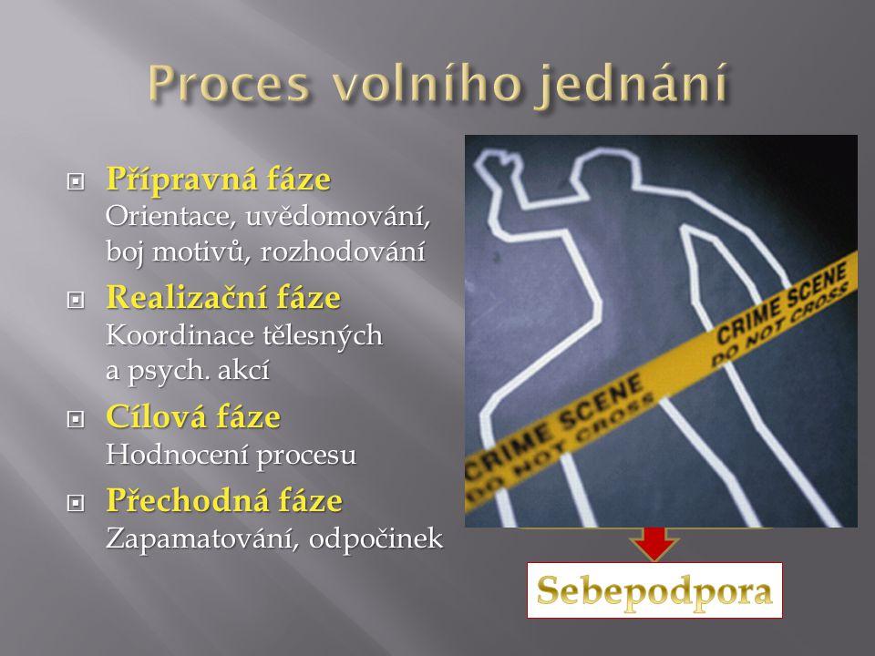  Přípravná fáze Orientace, uvědomování, boj motivů, rozhodování  Realizační fáze Koordinace tělesných a psych.