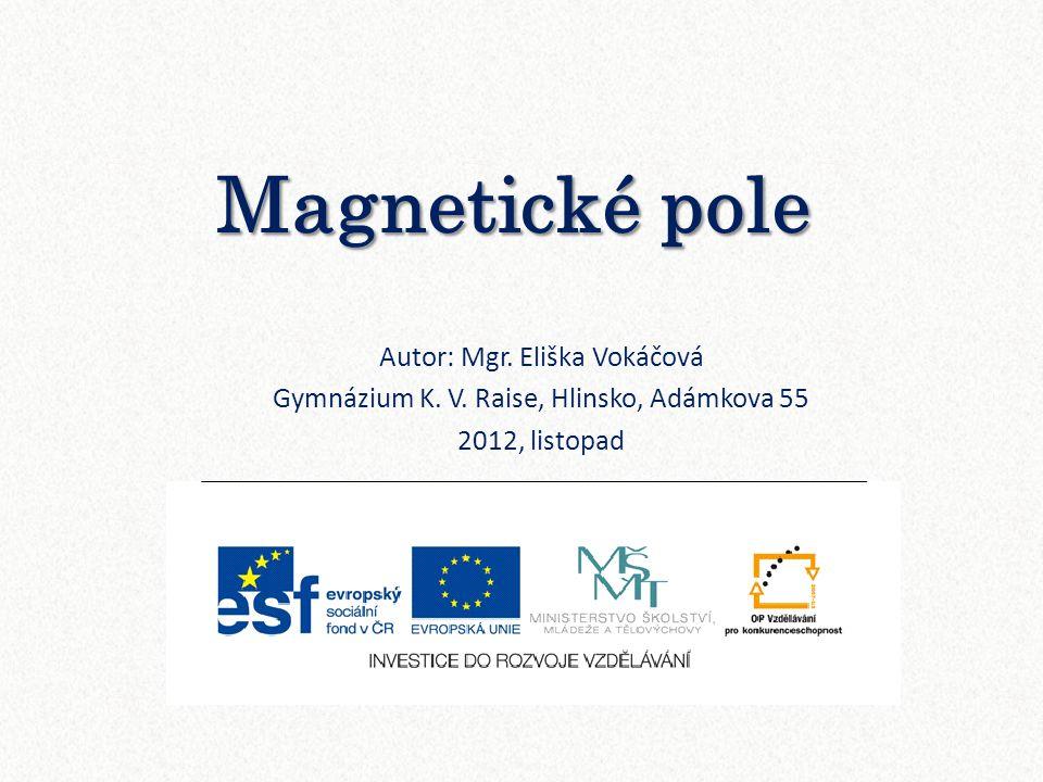 Magnetické pole Autor: Mgr. Eliška Vokáčová Gymnázium K. V. Raise, Hlinsko, Adámkova 55 2012, listopad
