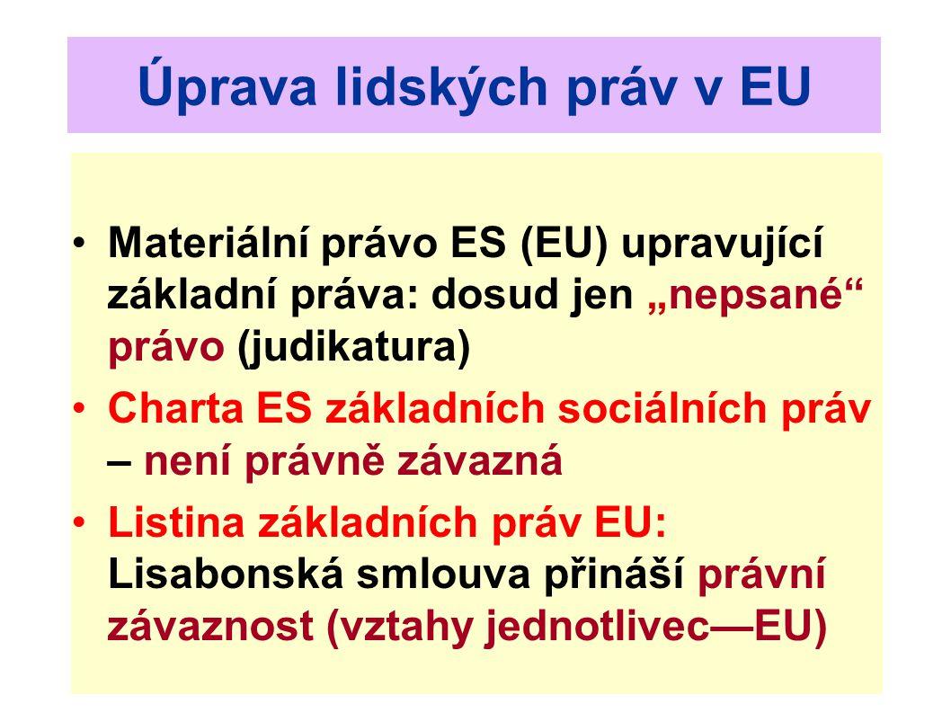 Přístup k soudům EU Stejné jako při vynucování lidských práv: čl.
