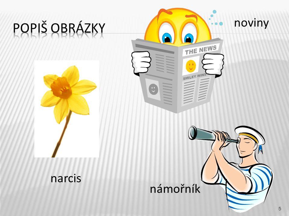 5 narcis noviny námořník