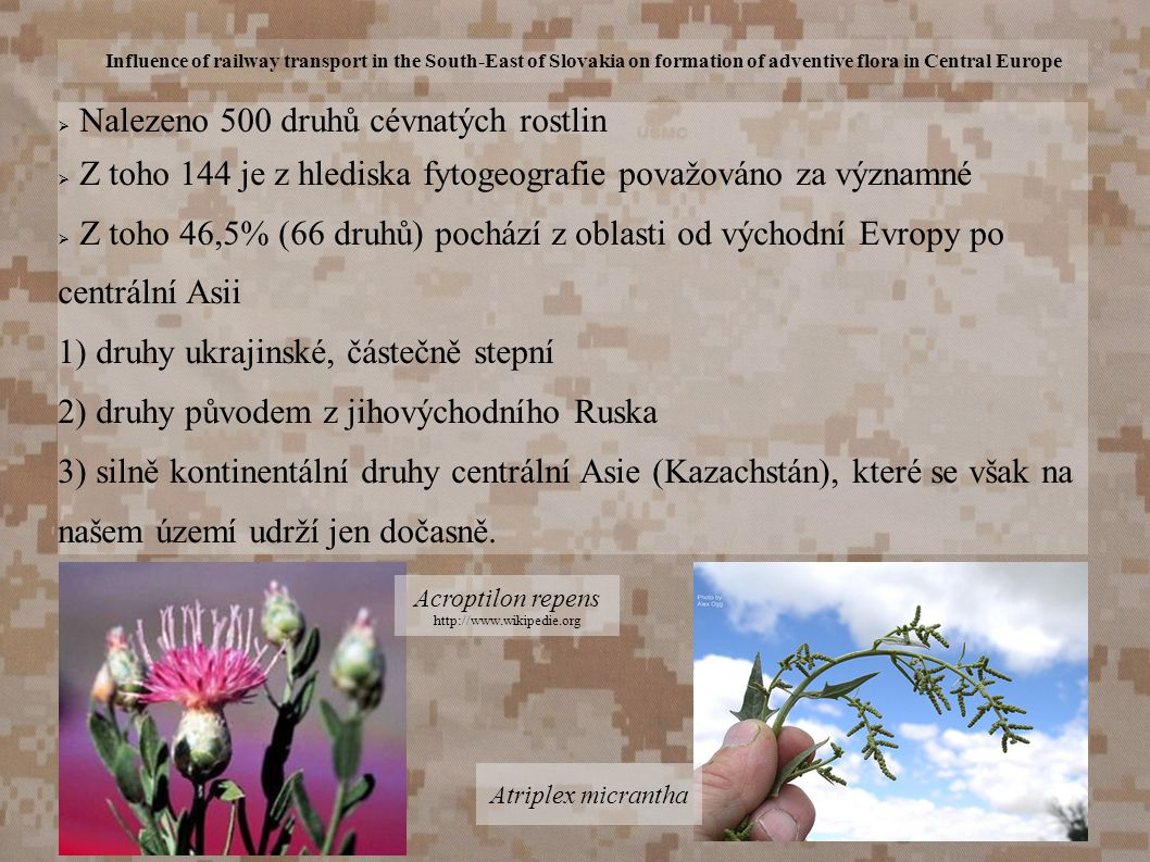 Influence of railway transport in the South-East of Slovakia on formation of adventive flora in Central Europe  Nalezeno 500 druhů cévnatých rostlin
