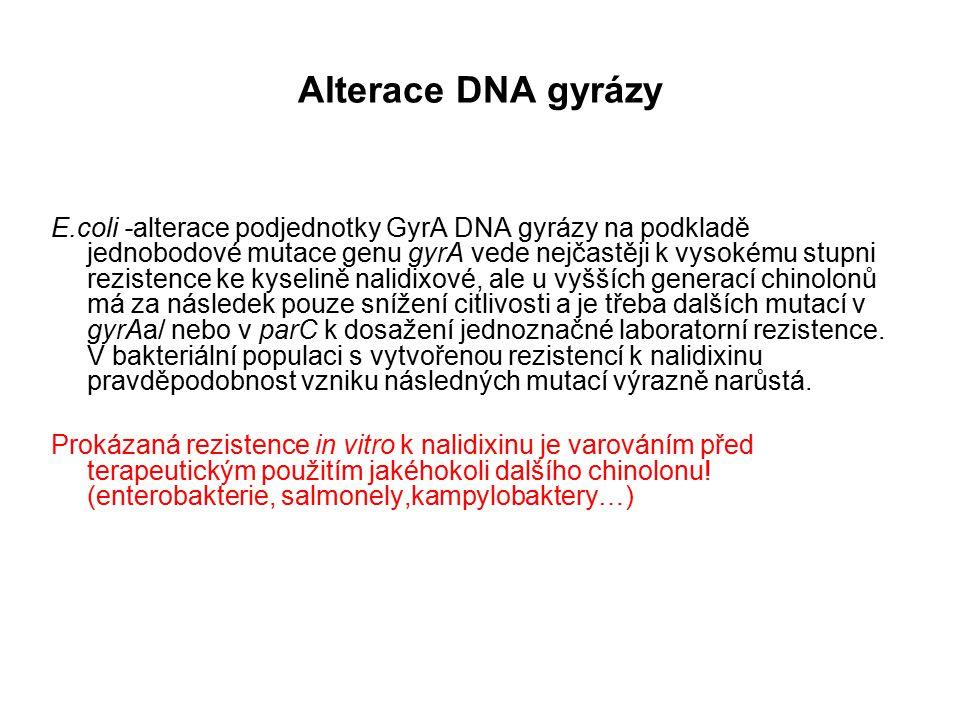 Alterace DNA gyrázy E.coli -alterace podjednotky GyrA DNA gyrázy na podkladě jednobodové mutace genu gyrA vede nejčastěji k vysokému stupni rezistence ke kyselině nalidixové, ale u vyšších generací chinolonů má za následek pouze snížení citlivosti a je třeba dalších mutací v gyrAa/ nebo v parC k dosažení jednoznačné laboratorní rezistence.