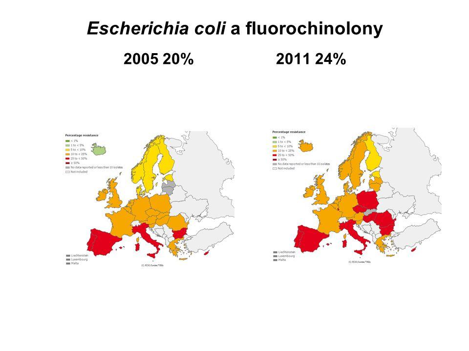 Escherichia coli a fluorochinolony 2005 20% 2011 24%