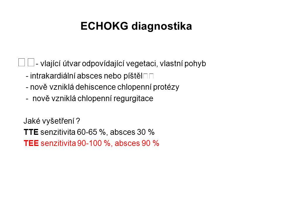 ECHOKG diagnostika - vlající útvar odpovídající vegetaci, vlastní pohyb - intrakardiální absces nebo píštěl - nově vzniklá dehiscence chlopenní protézy - nově vzniklá chlopenní regurgitace Jaké vyšetření .