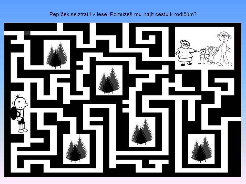 Pepíček se ztratil v lese. Pomůžeš mu najít cestu k rodičům?