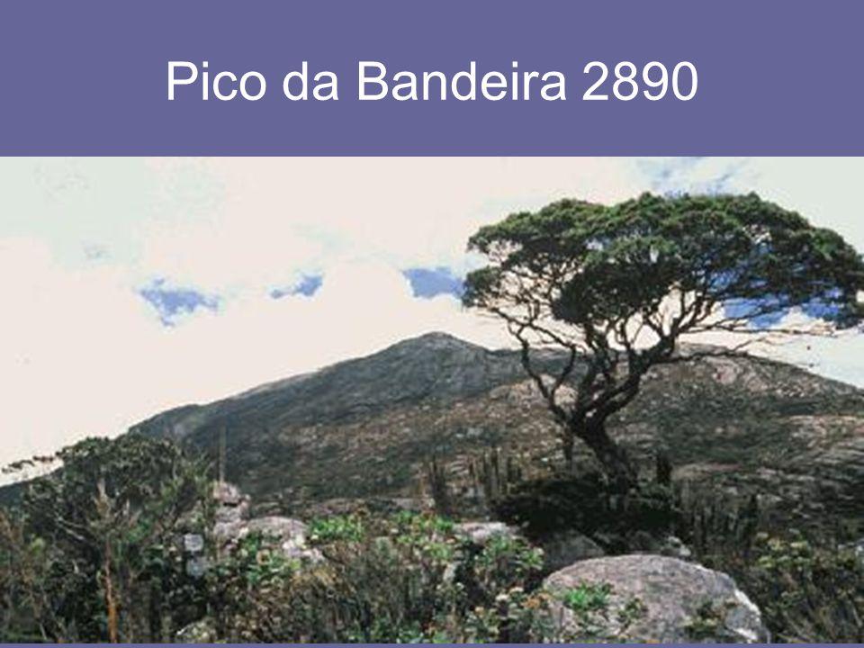 26.4.2015Zdeněk Bergman, G Teplice Pico da Bandeira 2890