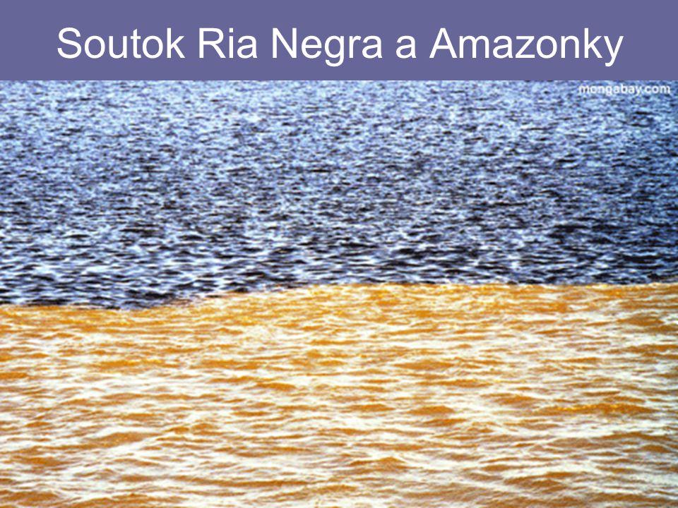 26.4.2015Zdeněk Bergman, G Teplice Soutok Ria Negra a Amazonky