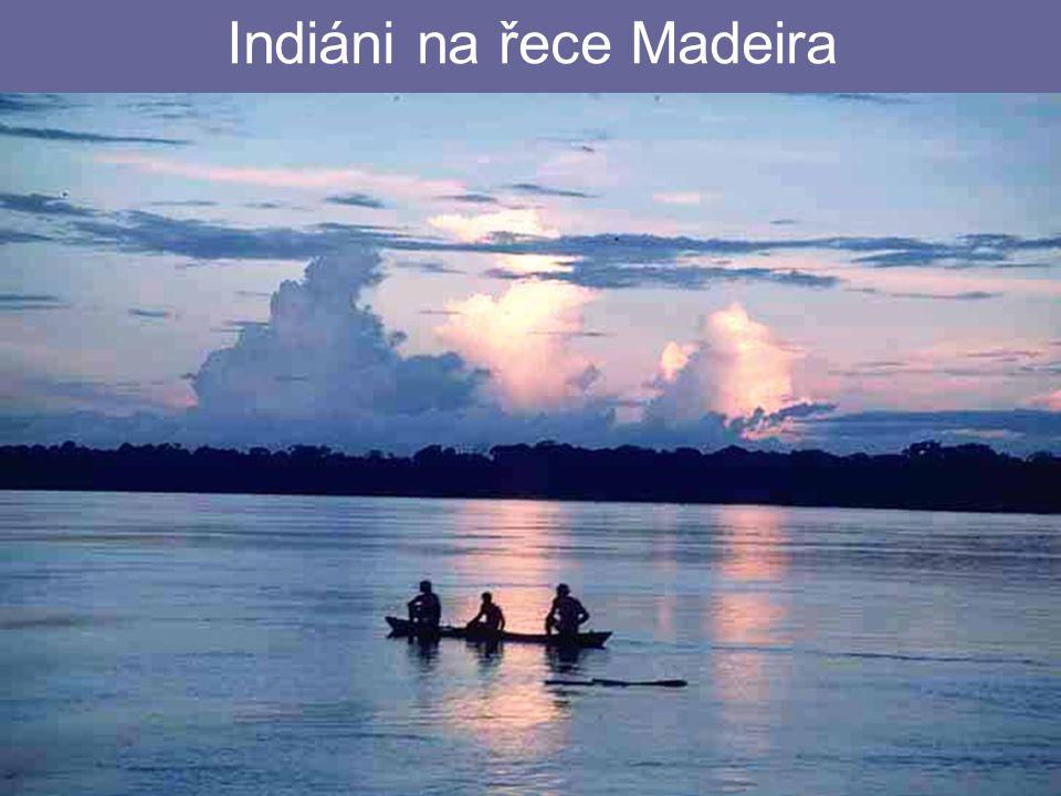 26.4.2015Zdeněk Bergman, G Teplice Indiáni na řece Madeira