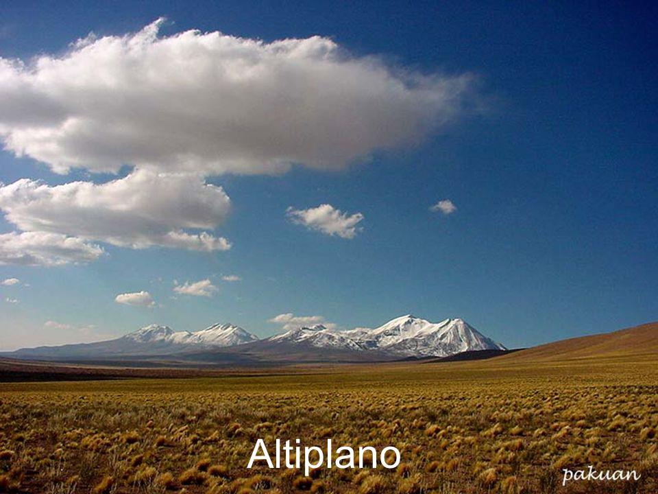 26.4.2015Zdeněk Bergman, G Teplice Altiplano