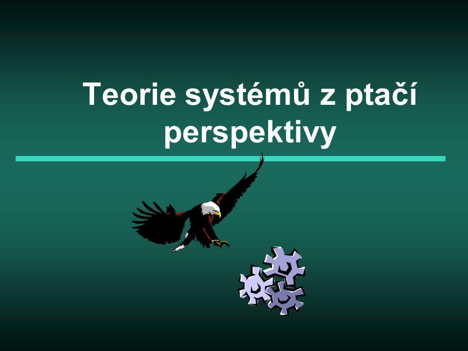 Teorie systémů z ptačí perspektivy