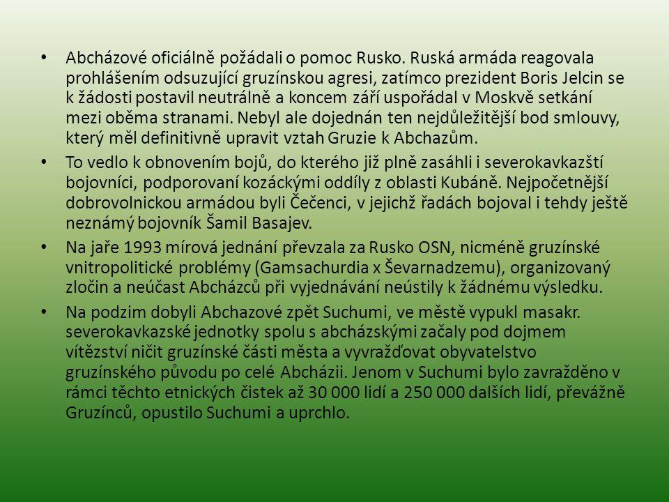 Abcházové oficiálně požádali o pomoc Rusko. Ruská armáda reagovala prohlášením odsuzující gruzínskou agresi, zatímco prezident Boris Jelcin se k žádos