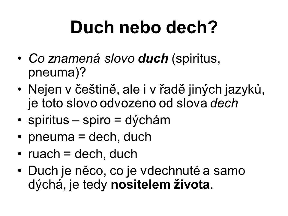 Duch nebo dech? Co znamená slovo duch (spiritus, pneuma)? Nejen v češtině, ale i v řadě jiných jazyků, je toto slovo odvozeno od slova dech spiritus –