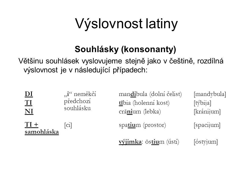 Výslovnost latiny Souhlásky (konsonanty) Většinu souhlásek vyslovujeme stejně jako v češtině, rozdílná výslovnost je v následující případech: DI TI NI