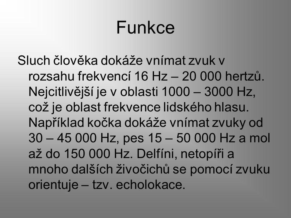 Funkce Sluch člověka dokáže vnímat zvuk v rozsahu frekvencí 16 Hz – 20 000 hertzů. Nejcitlivější je v oblasti 1000 – 3000 Hz, což je oblast frekvence
