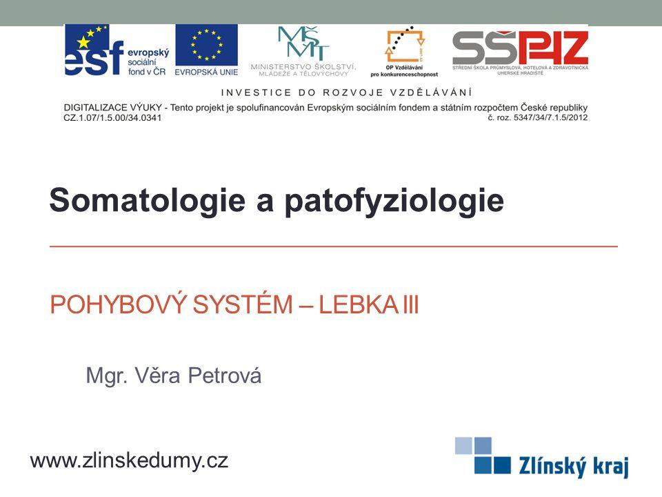 POHYBOVÝ SYSTÉM – LEBKA III Mgr. Věra Petrová www.zlinskedumy.cz Somatologie a patofyziologie