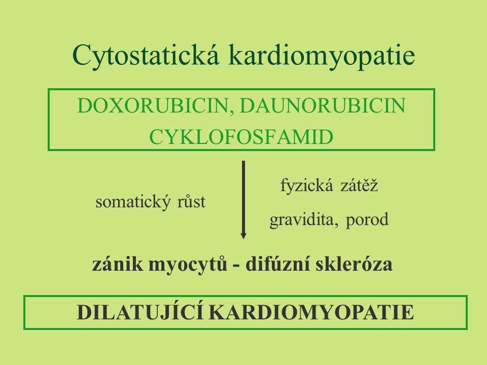 Cytostatická kardiomyopatie DOXORUBICIN, DAUNORUBICIN CYKLOFOSFAMID DILATUJÍCÍ KARDIOMYOPATIE somatický růst fyzická zátěž gravidita, porod zánik myocytů - difúzní skleróza
