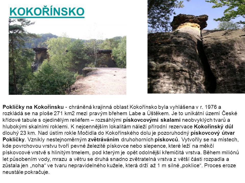KOKOŘÍNSKO Pokličky na Kokořínsku - chráněná krajinná oblast Kokořínsko byla vyhlášena v r. 1976 a rozkládá se na ploše 271 km2 mezi pravým břehem Lab