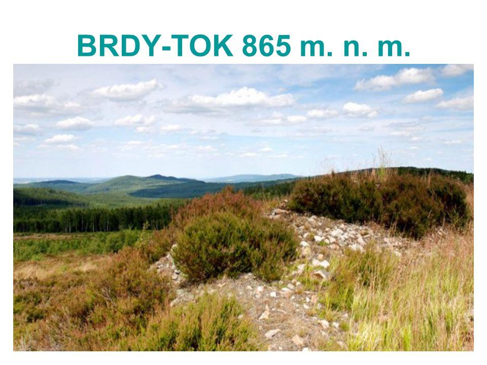 BRDY-TOK 865 m. n. m.