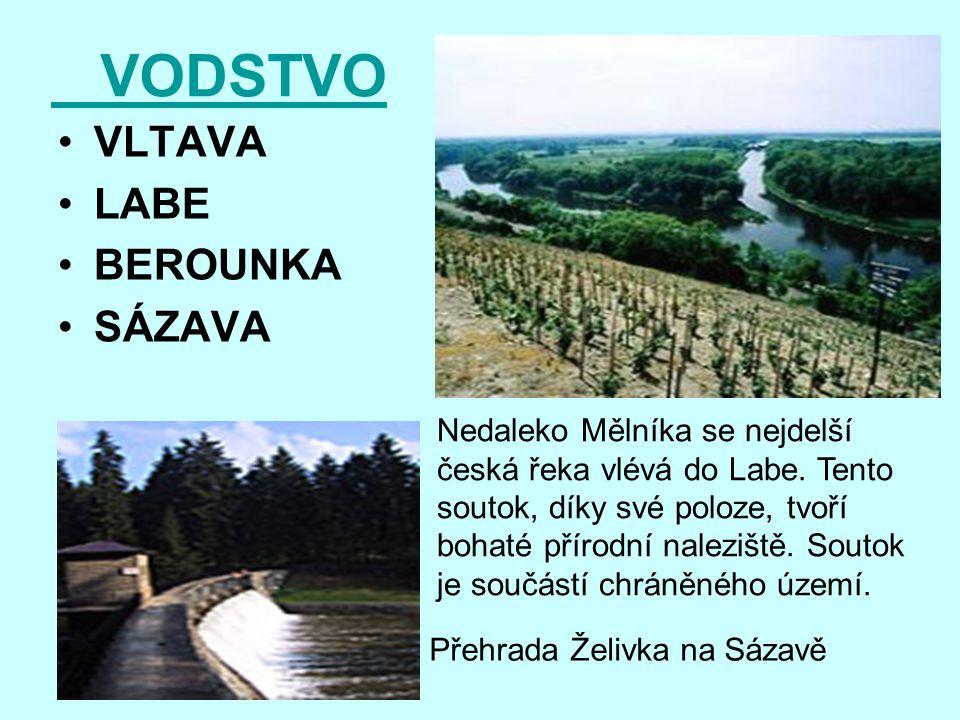 VODSTVO VLTAVA LABE BEROUNKA SÁZAVA Nedaleko Mělníka se nejdelší česká řeka vlévá do Labe. Tento soutok, díky své poloze, tvoří bohaté přírodní nalezi