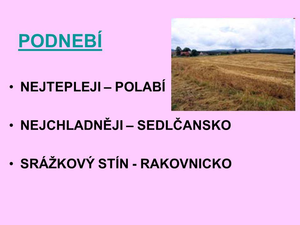 PŮDY ČERNOZEMĚ – POLABÍ nejúrodnější půdy – vhodné pro pěstování cukrovky, kukuřice, pšenice HNĚDOZEMĚ a KAMBIZEMĚ