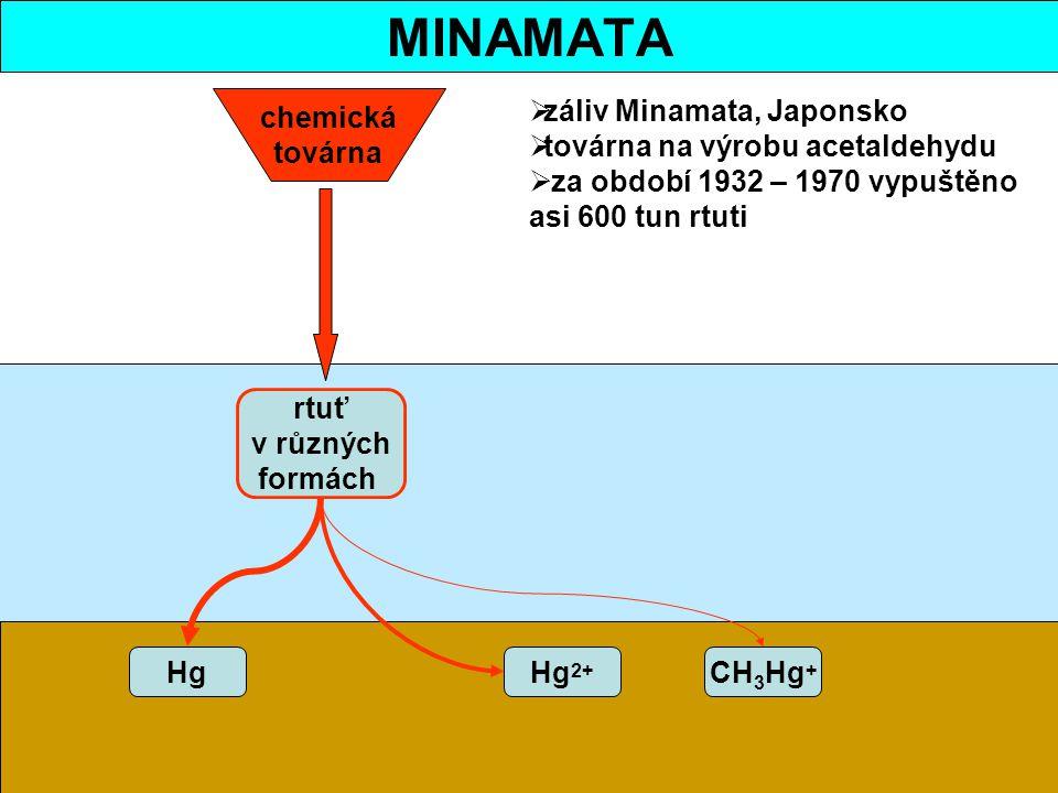 HgHg 2+ CH 3 Hg + chemická továrna rtuť v různých formách  záliv Minamata, Japonsko  továrna na výrobu acetaldehydu  za období 1932 – 1970 vypuštěn