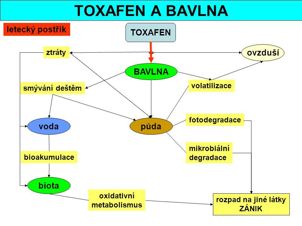 TOXAFEN A BAVLNA TOXAFEN BAVLNA letecký postřik voda ovzduší biota půda smývání deštěm bioakumulace oxidativní metabolismus mikrobiální degradace vola