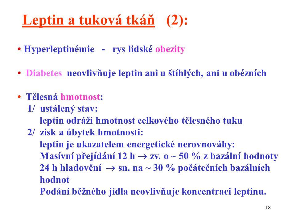 18 Hyperleptinémie - rys lidské obezity Diabetes neovlivňuje leptin ani u štíhlých, ani u obézních Tělesná hmotnost: 1/ ustálený stav: leptin odráží hmotnost celkového tělesného tuku 2/ zisk a úbytek hmotnosti: leptin je ukazatelem energetické nerovnováhy: Masívní přejídání 12 h  zv.