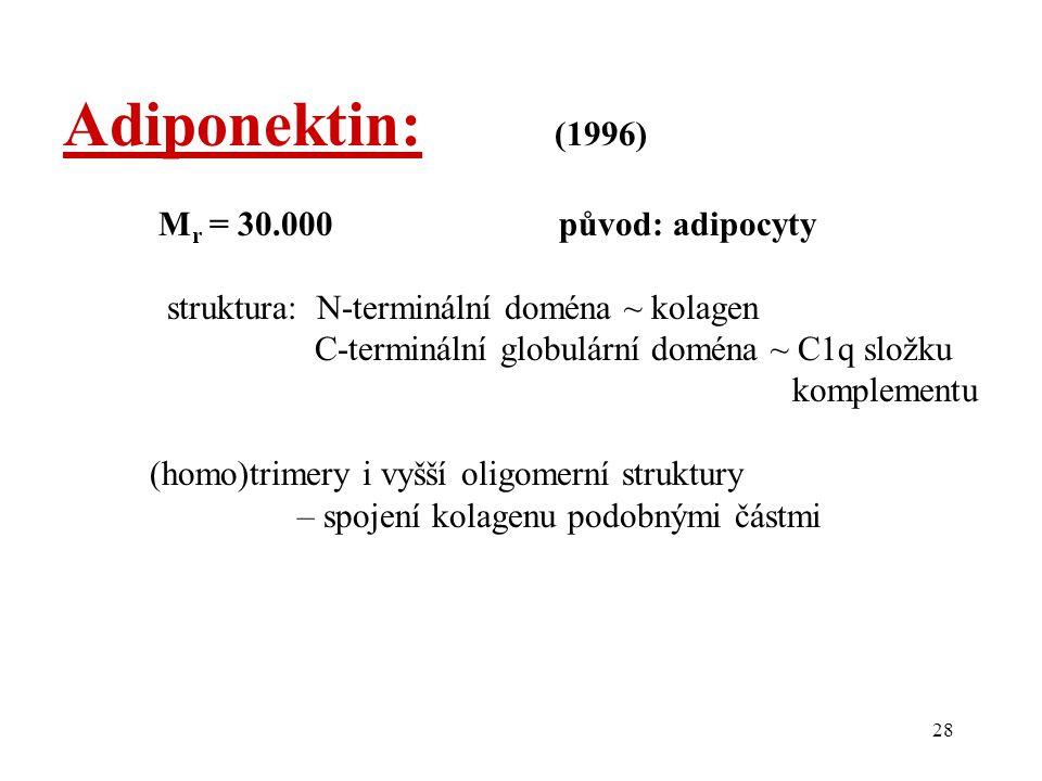 28 Adiponektin: (1996) M r = 30.000 původ: adipocyty struktura: N-terminální doména ~ kolagen C-terminální globulární doména ~ C1q složku komplementu (homo)trimery i vyšší oligomerní struktury – spojení kolagenu podobnými částmi