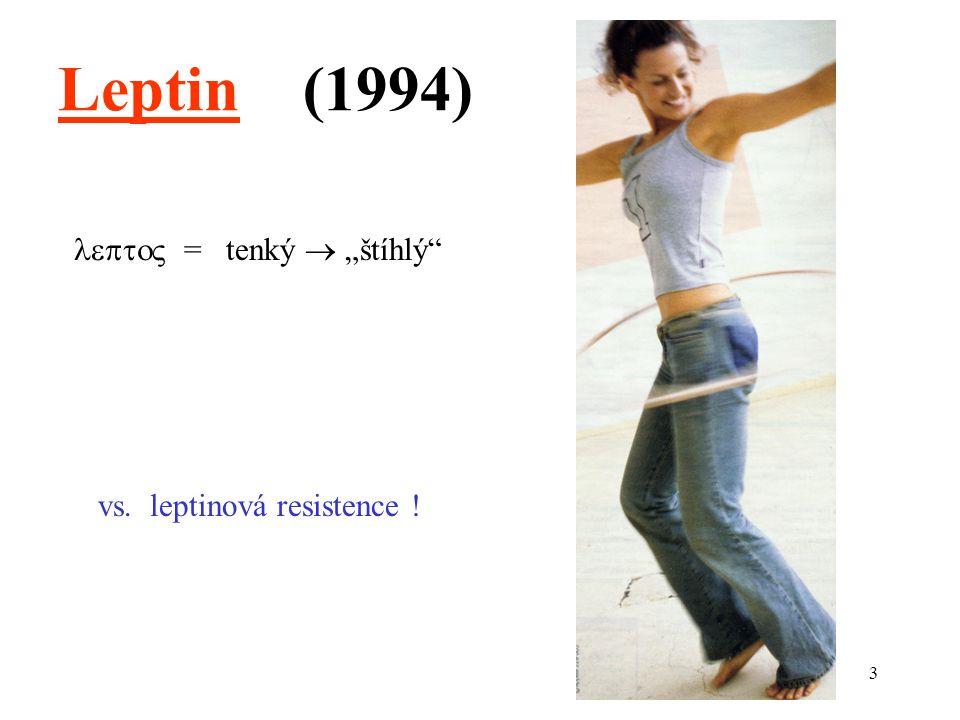 """3  = tenký  """"štíhlý Leptin (1994) vs. leptinová resistence !"""